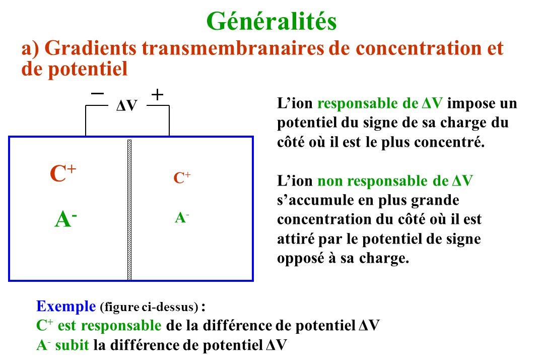 Généralités a) Gradients transmembranaires de concentration et de potentiel. ΔV. _. + C+ A-