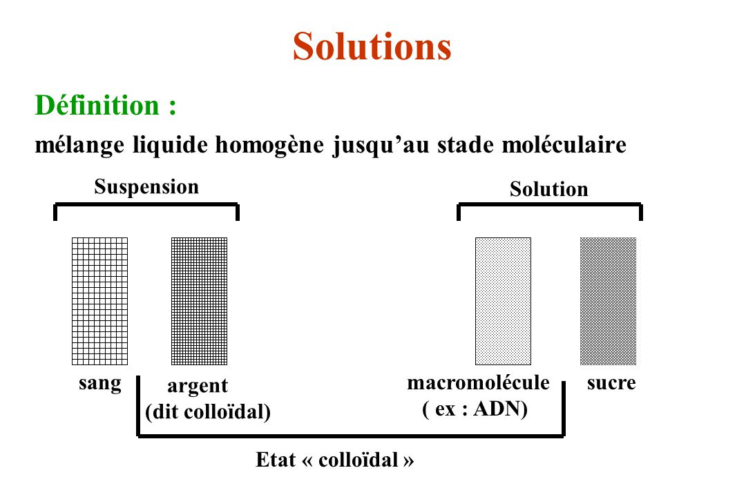 macromolécule ( ex : ADN)