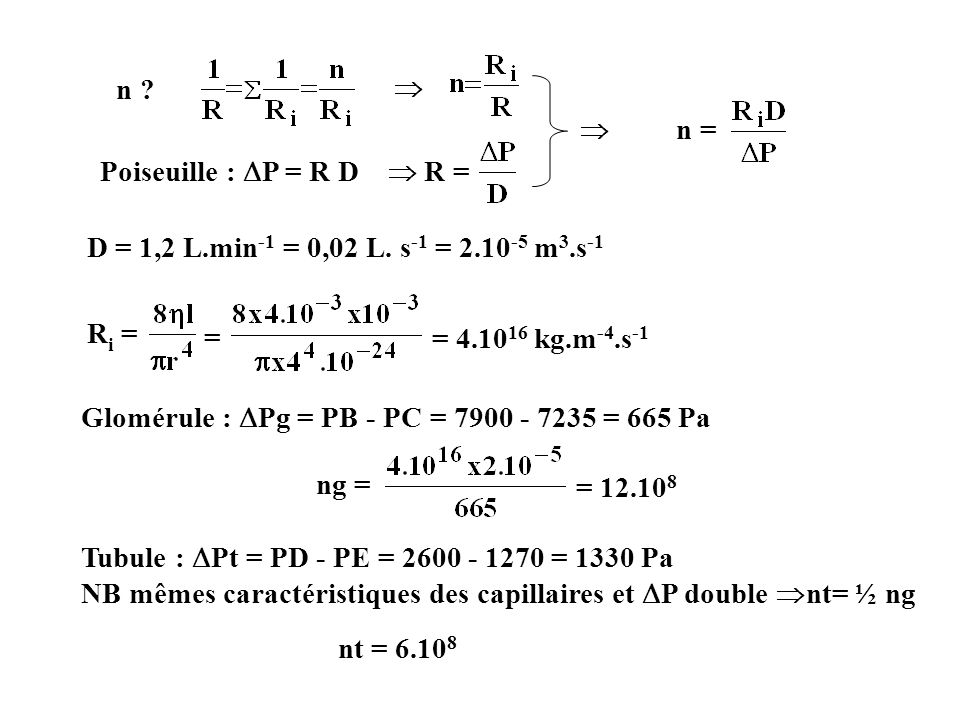= 4.1016 kg.m-4.s-1 n   n = Poiseuille : P = R D  R =
