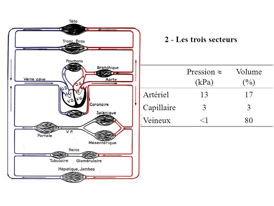 2 - Les trois secteurs Pression  (kPa) Volume (%) Artériel 13 17 Capillaire 3 Veineux <1 80