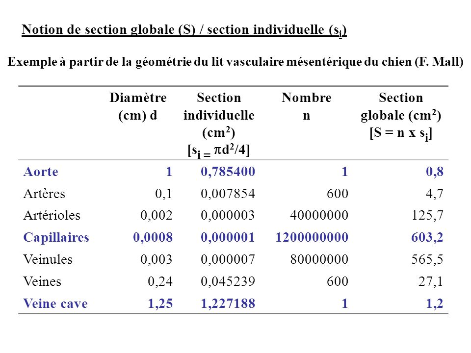 Notion de section globale (S) / section individuelle (si)