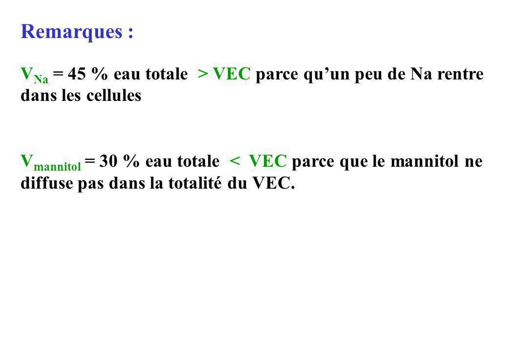 Remarques : VNa = 45 % eau totale > VEC parce qu'un peu de Na rentre dans les cellules.