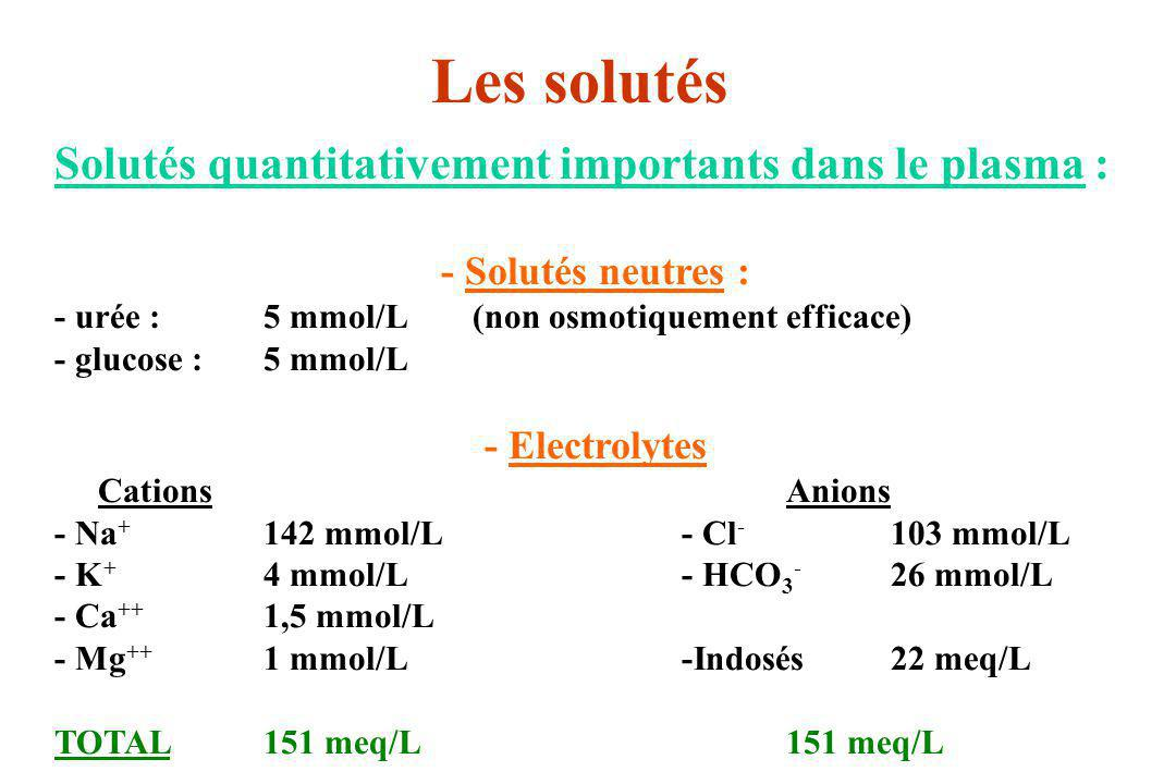 Les solutés Solutés quantitativement importants dans le plasma :