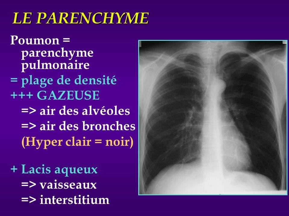 LE PARENCHYME Poumon = parenchyme pulmonaire = plage de densité