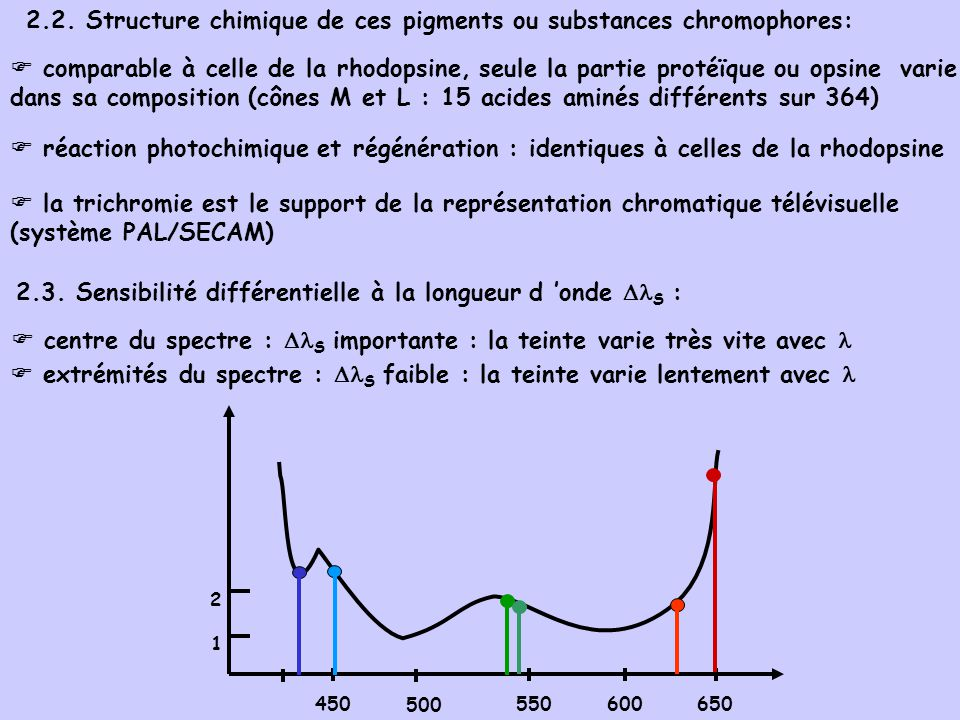 2.2. Structure chimique de ces pigments ou substances chromophores: