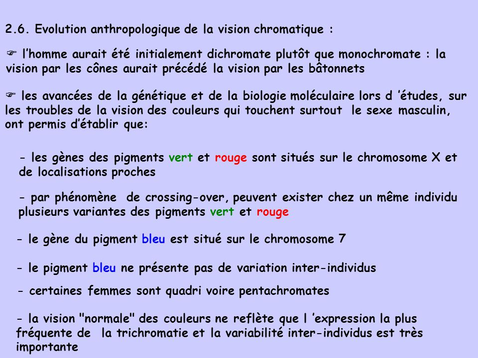 2.6. Evolution anthropologique de la vision chromatique :