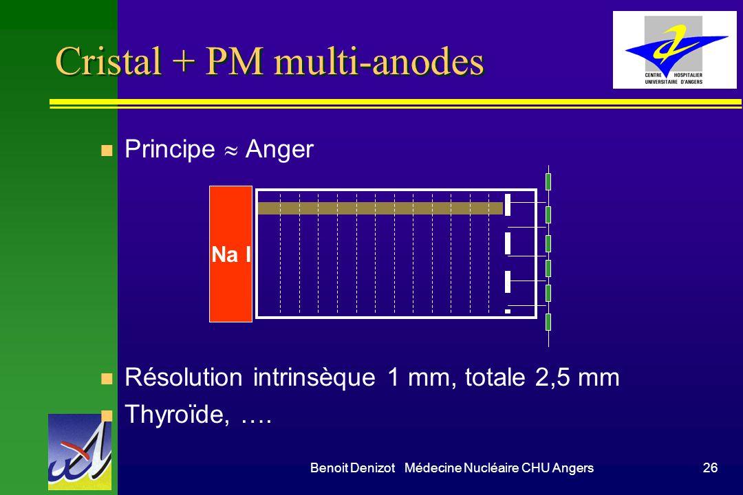 Cristal + PM multi-anodes