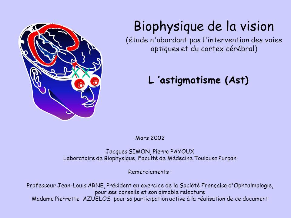 Biophysique de la vision