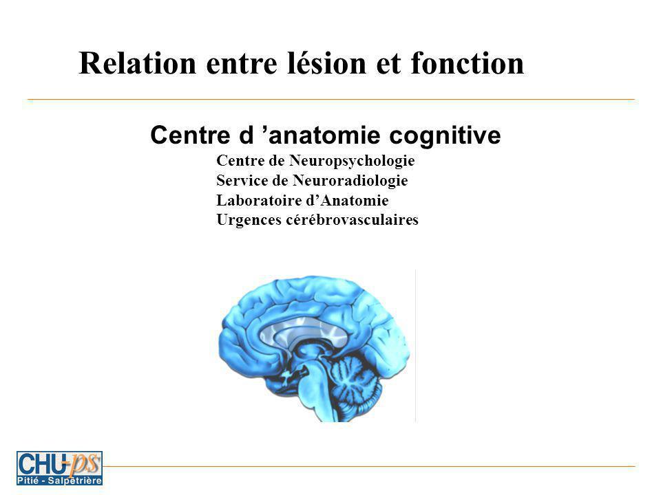 Relation entre lésion et fonction
