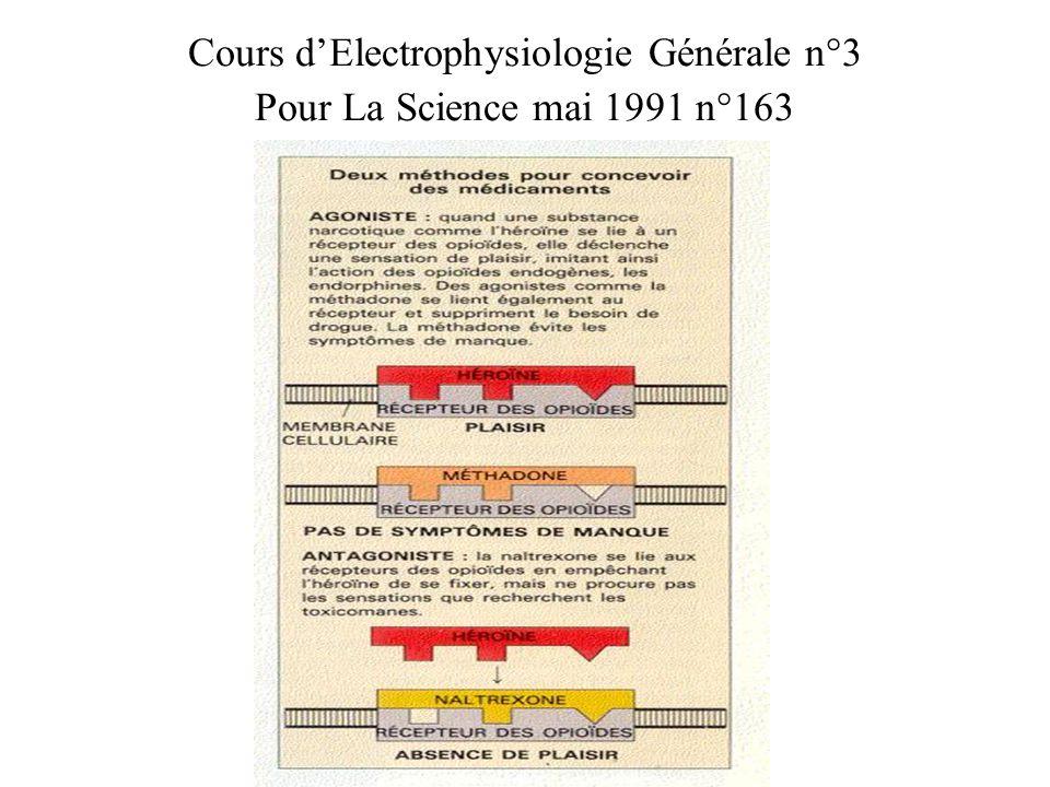 Cours d'Electrophysiologie Générale n°3 Pour La Science mai 1991 n°163