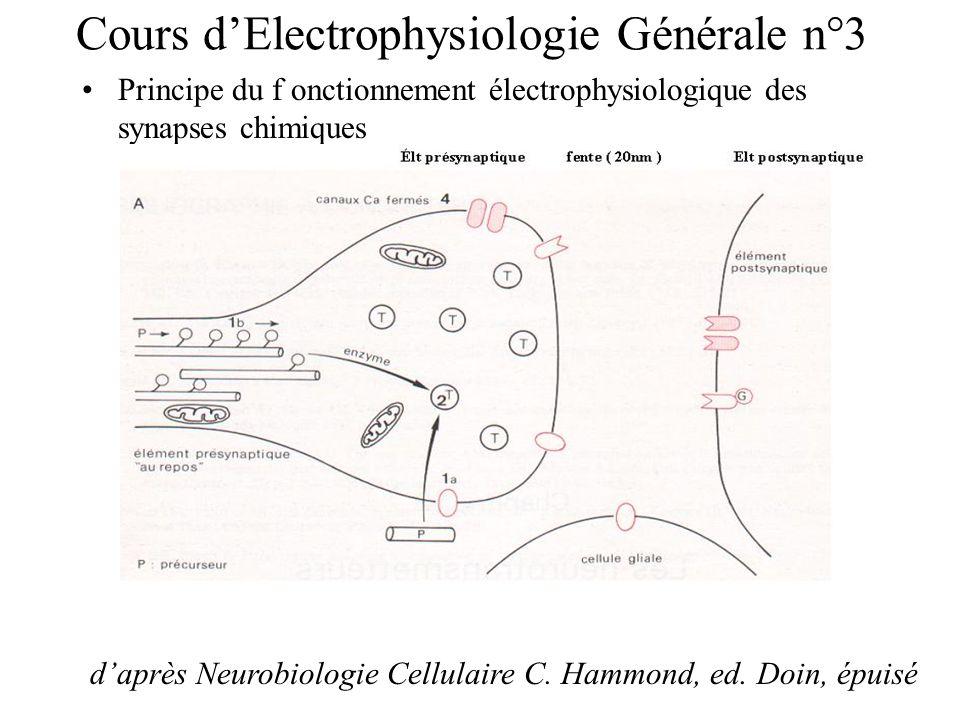 Cours d'Electrophysiologie Générale n°3