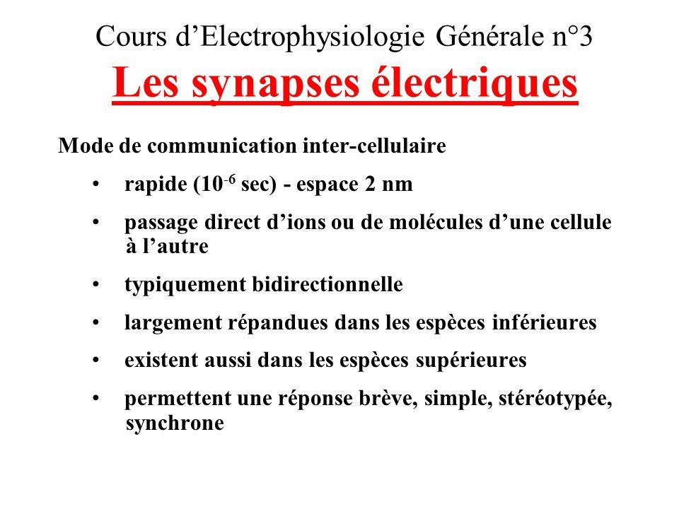 Cours d'Electrophysiologie Générale n°3 Les synapses électriques