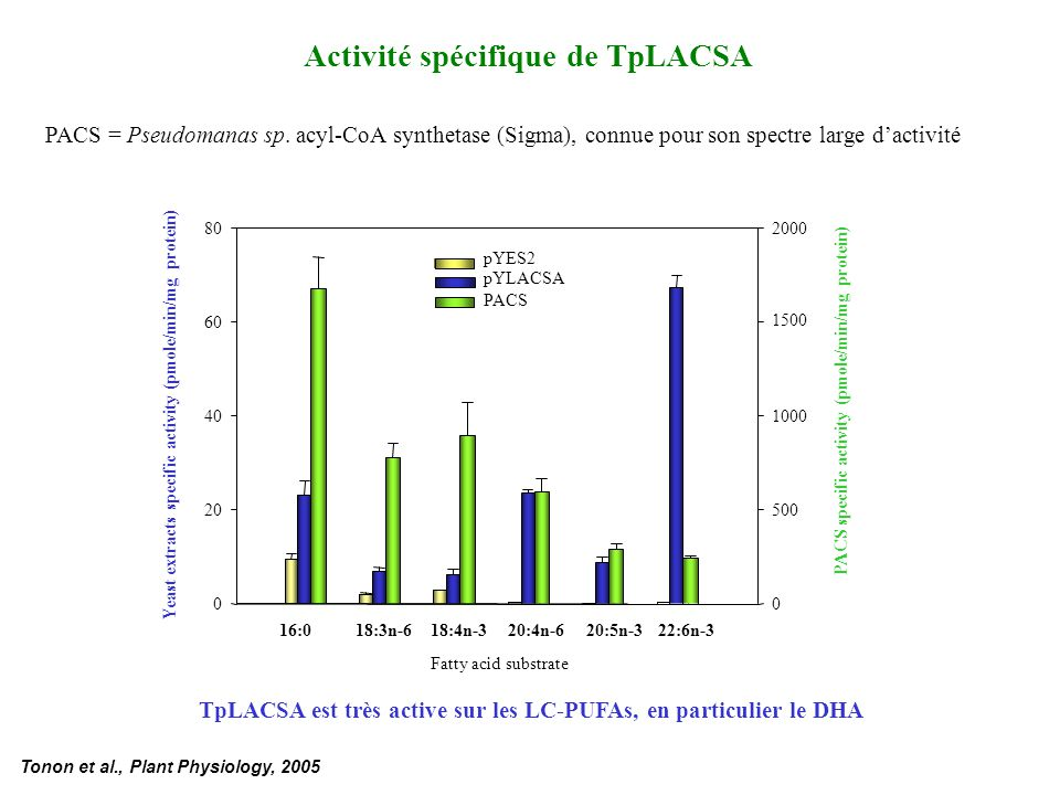 Activité spécifique de TpLACSA