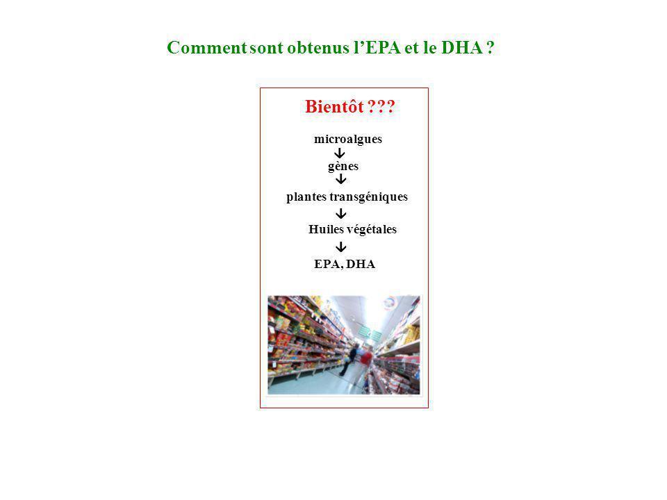 Comment sont obtenus l'EPA et le DHA