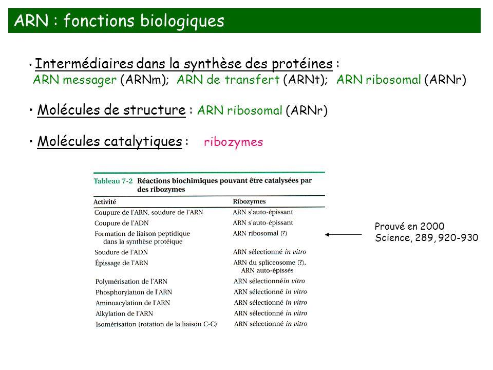 ARN : fonctions biologiques
