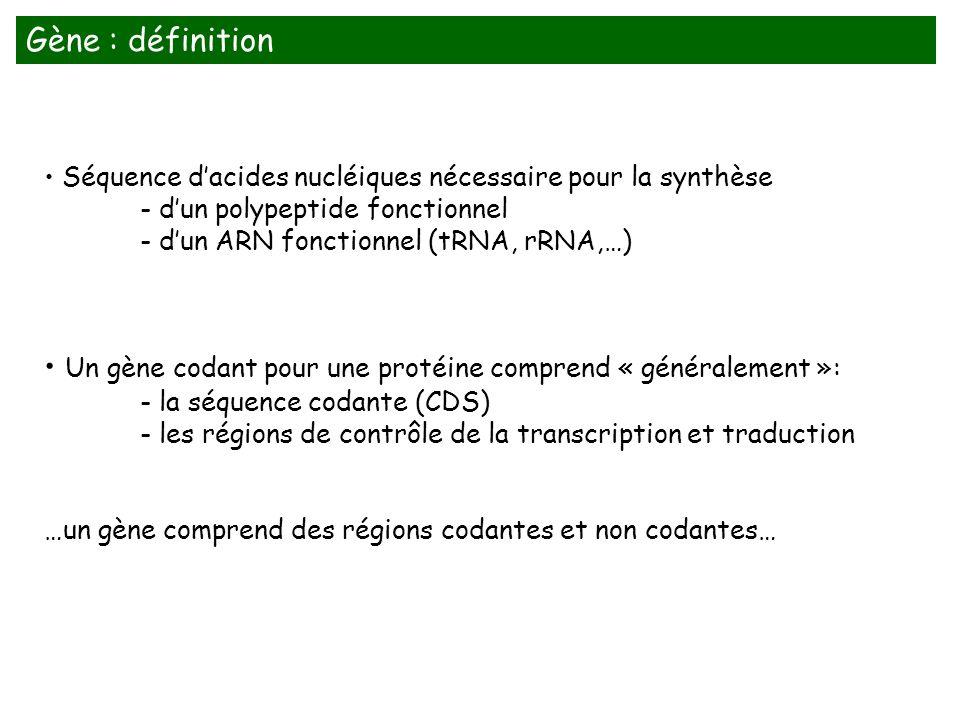 Un gène codant pour une protéine comprend « généralement »:
