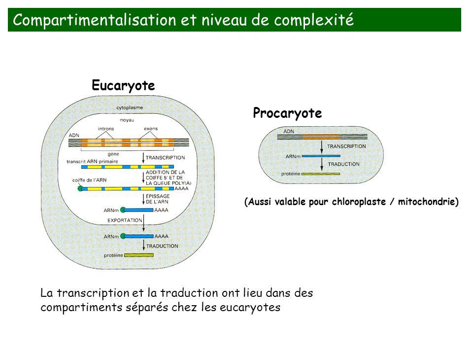 Compartimentalisation et niveau de complexité