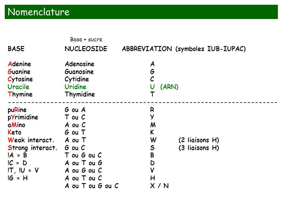 Nomenclature BASE NUCLEOSIDE ABBREVIATION (symboles IUB-IUPAC)
