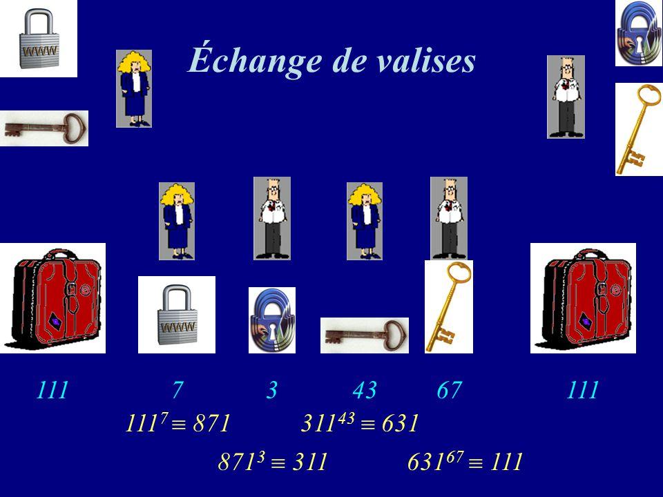 Échange de valises 3 67 7 43 111 111 1117  871 31143  631 8713  311 63167  111