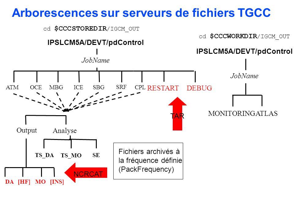 Arborescences sur serveurs de fichiers TGCC