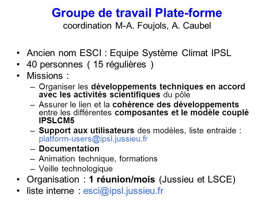 Groupe de travail Plate-forme coordination M-A. Foujols, A. Caubel