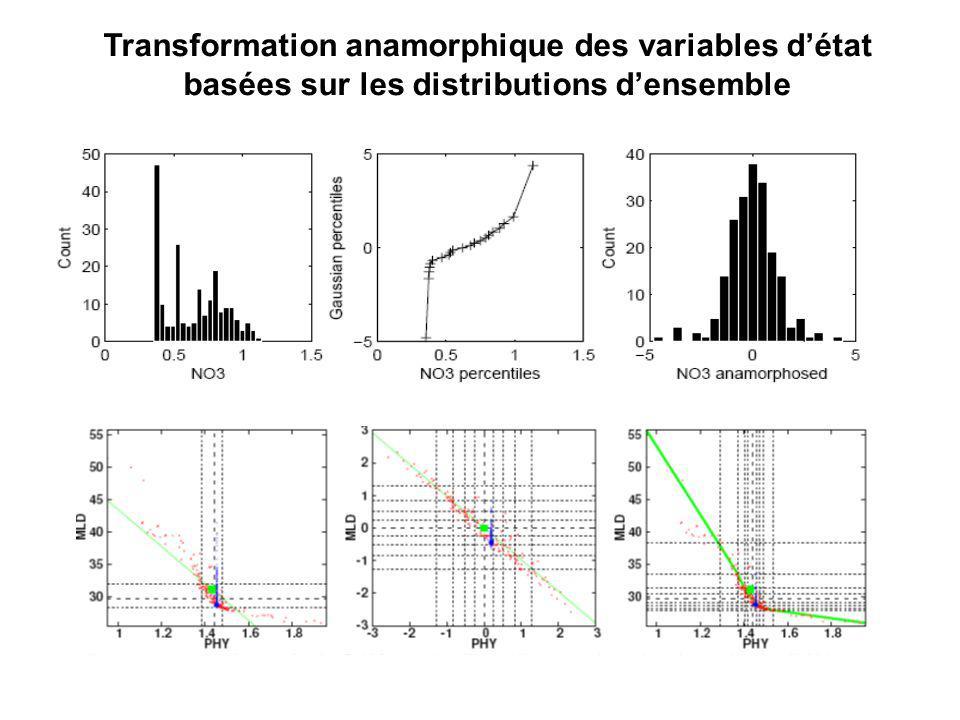 Transformation anamorphique des variables d'état basées sur les distributions d'ensemble