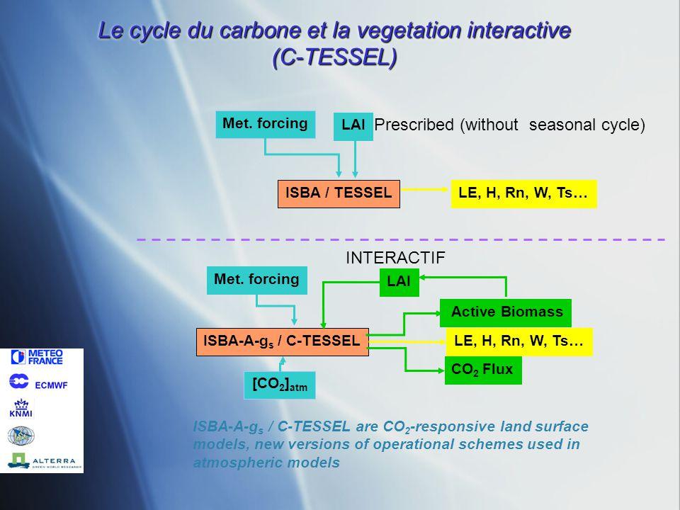 Le cycle du carbone et la vegetation interactive (C-TESSEL)