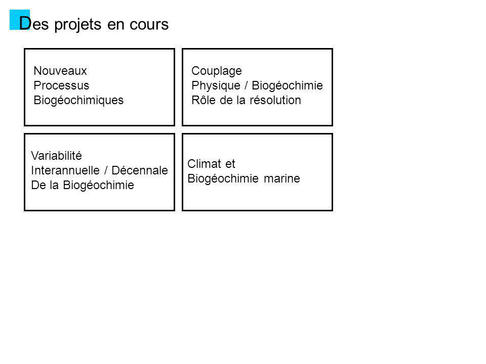 Des projets en cours Nouveaux Processus Biogéochimiques Couplage