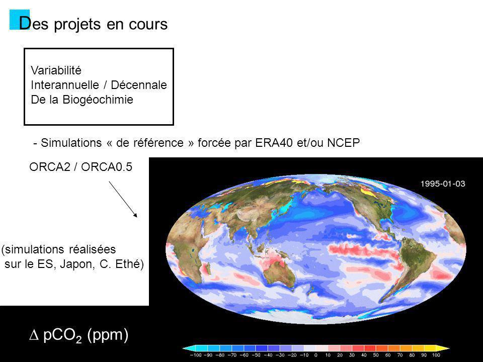 Des projets en cours D pCO2 (ppm) Variabilité