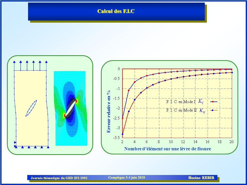 Calcul des F.I.C Erreur relative en %