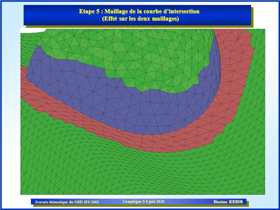 Etape 5 : Maillage de la courbe d'intersection