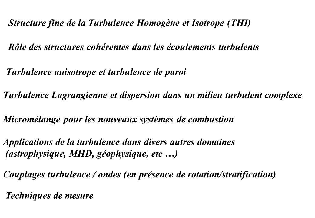 Structure fine de la Turbulence Homogène et Isotrope (THI)