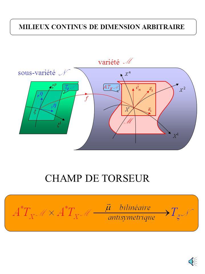 M CHAMP DE TORSEUR variété sous-variété
