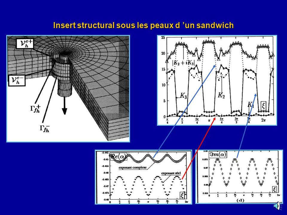 Insert structural sous les peaux d 'un sandwich