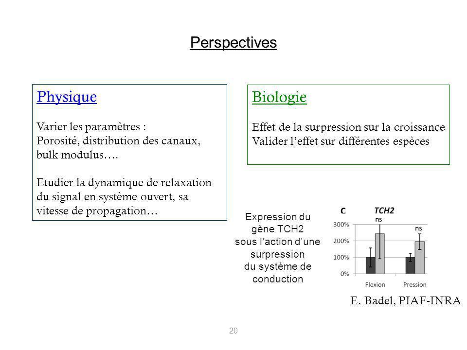 Perspectives Physique Biologie Varier les paramètres :