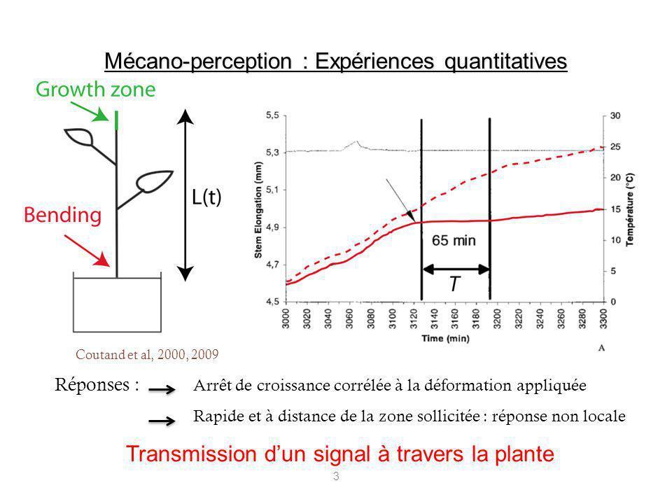Mécano-perception : Expériences quantitatives