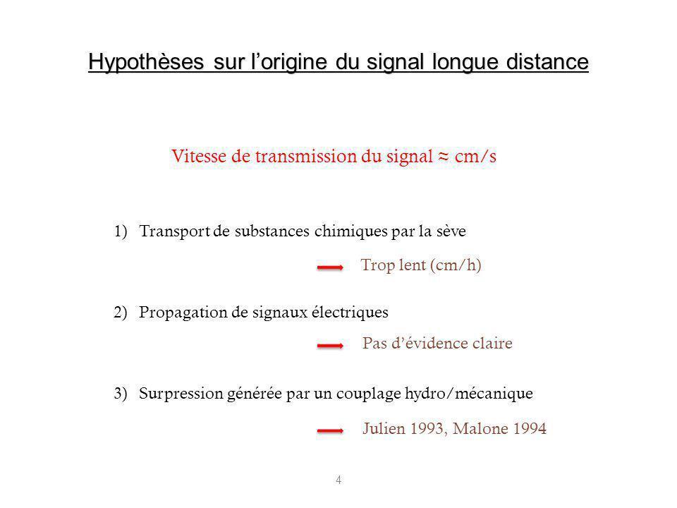 Hypothèses sur l'origine du signal longue distance