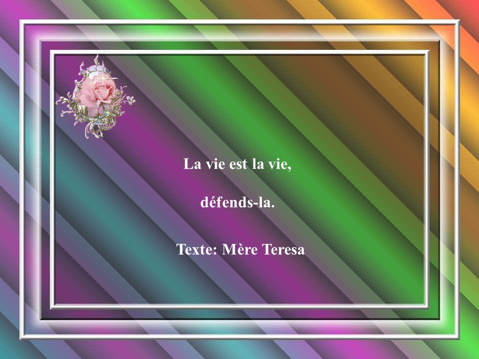 La vie est la vie, défends-la. Texte: Mère Teresa