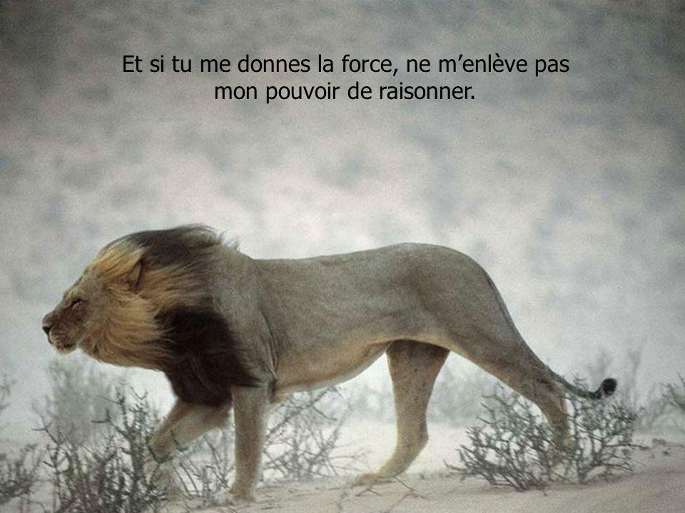 Et si tu me donnes la force, ne m'enlève pas mon pouvoir de raisonner.