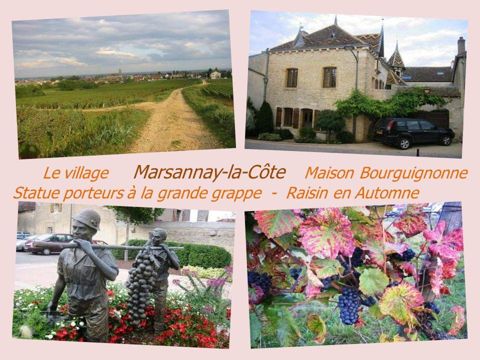 . Le village Marsannay-la-Côte Maison Bourguignonne Statue porteurs à la grande grappe - Raisin en Automne