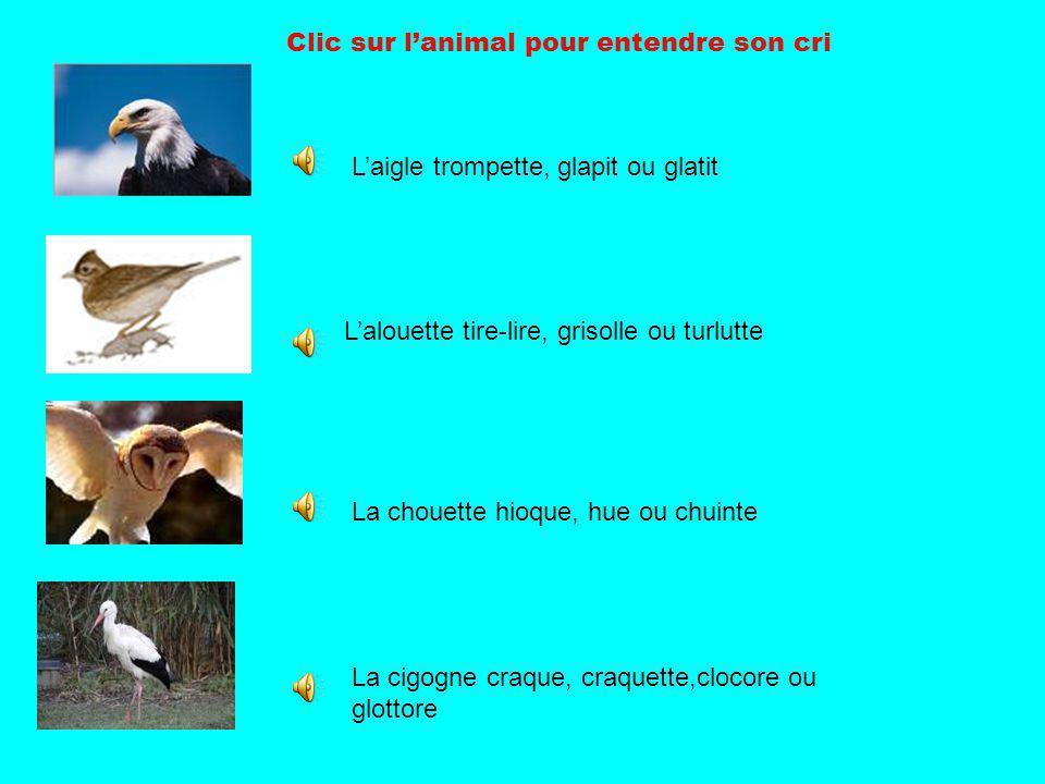 Clic sur l'animal pour entendre son cri