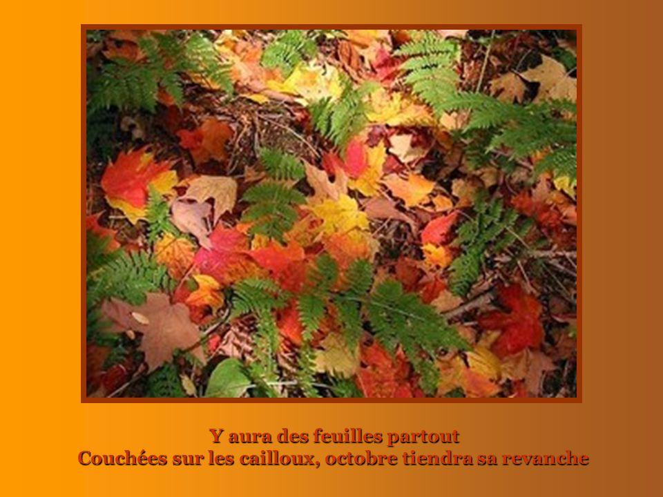 Y aura des feuilles partout