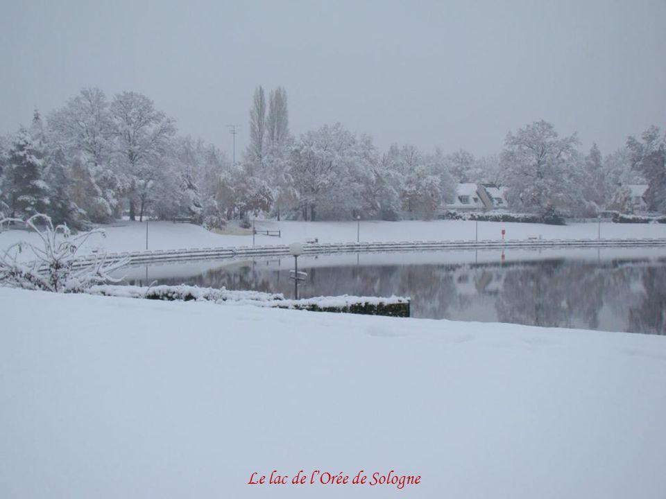 Le lac de l'Orée de Sologne