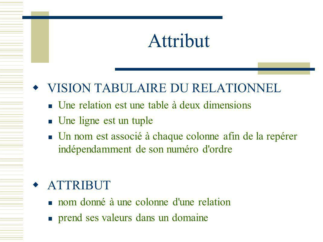 Attribut VISION TABULAIRE DU RELATIONNEL ATTRIBUT