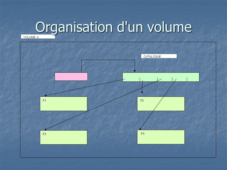 Organisation d un volume
