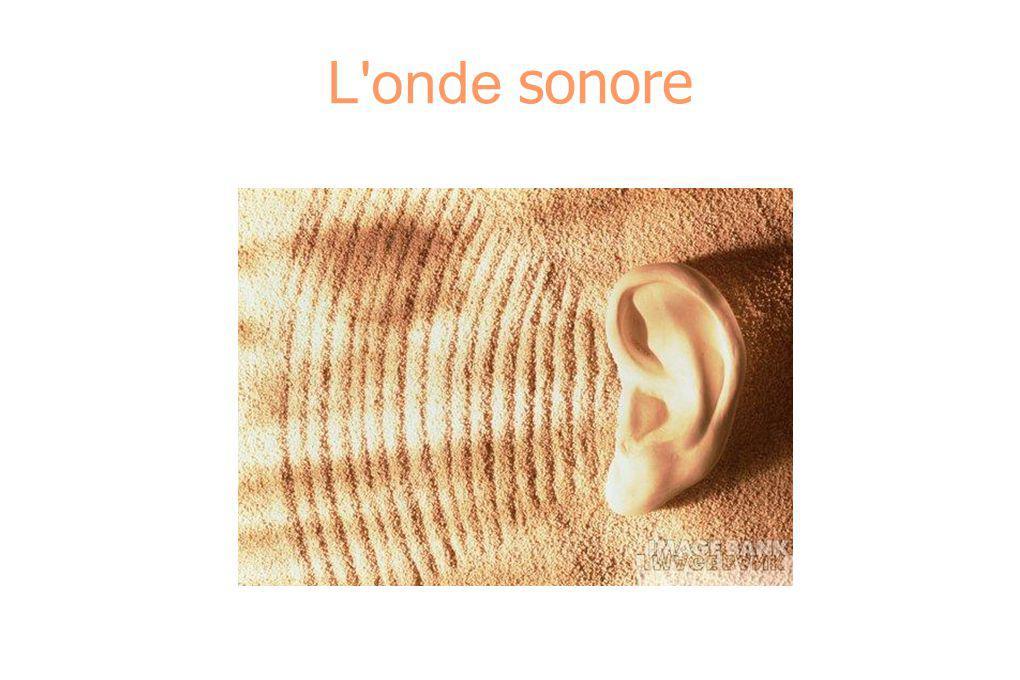 L onde sonore
