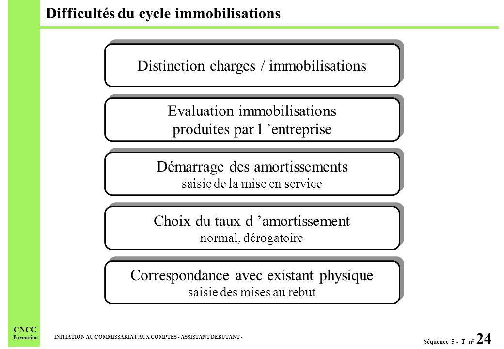 Difficultés du cycle immobilisations
