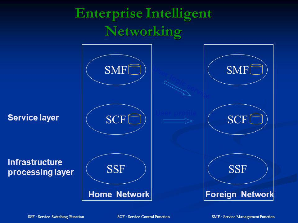 Enterprise Intelligent Networking