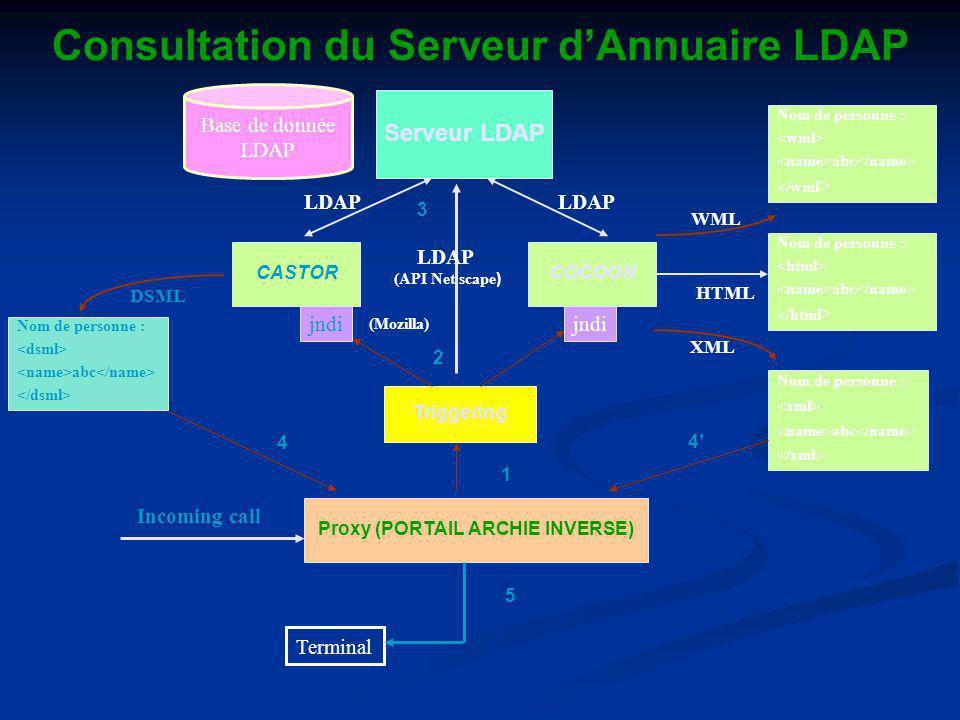 Consultation du Serveur d'Annuaire LDAP Proxy (PORTAIL ARCHIE INVERSE)