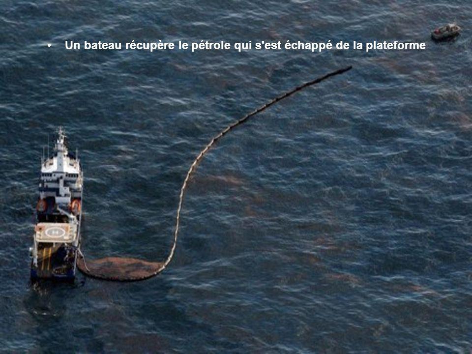 Un bateau récupère le pétrole qui s est échappé de la plateforme